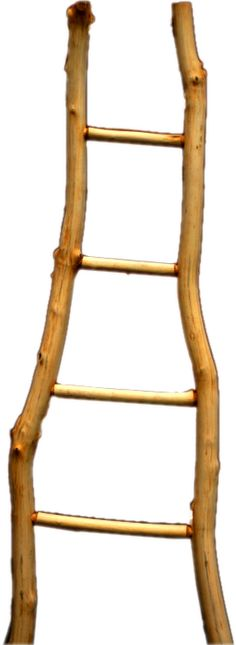 crooked ladder