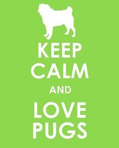 Pugs http://media-cdn.pinterest.com/upload/287526757429423365_baTQ9xAy_f.jpg ruthostler pug love