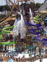 PurplePick The top ten theme parks in America