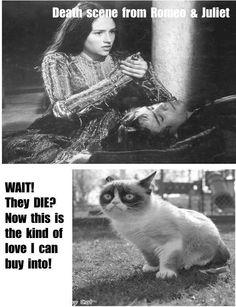 64479bf7f03ba8da8501a4b6c3da0038 grumpy cat meme grumpy kitty modern interpretation of juliet's balcony scene,Romeo And Juliet Meme