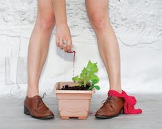 I Fertilized My Salad with Period Blood | VICE United States #gardening #tips