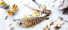 Jason Schreiber | Food Editor/Stylist — Recipe Development — Personal Chef