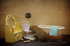 un-ecureuil-super-mignon-photographie-dans-des-positions-adorablement-humaines13