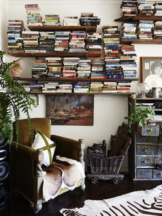 The Sydney home of Dion Antony, Anna Feller and Family. Photo - Eve Wilson. Production - Lucy Feagins on thedesignfiles.net