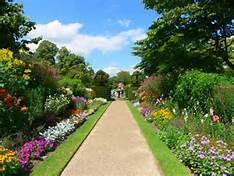 6447c0f817a0932e59c87c651b8895f0--image-search-gardens