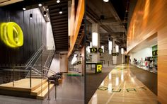 Image 15 of 22 from gallery of Matthew Knight Arena / TVA Architects. Photograph by Lawrence Anderson Oakland University, University Of Oregon, Sports Locker, Basketball Floor, Sport Craft, Gym Room, Auditorium, School Design, Knight