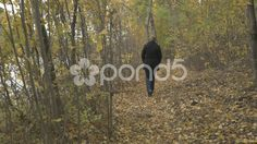 4k Woman Walking Through Woodland Path Autumn Leaves River Side Forest Nature - Stock Footage   by RyanJonesFilms #gh4 #lumix #panasonic #4k #video #woman #walking #leaves #path #dirttrack #trek #sightseeing #cold #river #canada #dunvegan #sky #coast #tide #road #hills #trees #scenic #travel