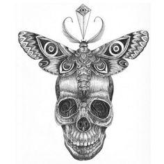 Чёрно-белый эскиз тату в виде черепа и бабочки.