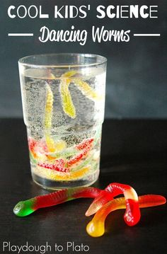 Awesome Kids Science!! Make gummy worms dance. Perfect for Halloween, rainy days, or any time you're in the mood for some seriously cool science.