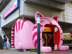 CAT CAFE!! | Places I want to be | Pinterest