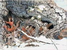Sallie Middleton, Chipmunk in the Snow Watercolor Portrait Painting, Chipmunks, Sally, Illustration Art, Trees, Inspire, Snow, Artists, Beautiful