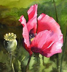 FLOWERS - Krzysztof Kowalski - Watercolors