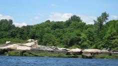 david's island 2