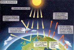el 51% de las radiaciones solares llegan a la corteza terrestre, el 19% son absorbidas por la atmosfera y el 30% reflejadas por la superficie al albedo.