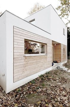 cladding / white / wood