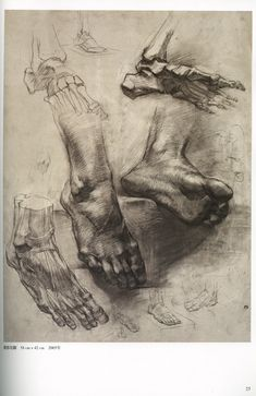"Repin State Academic Institute ""Anatomical & Figure Drawing"" (Chinese)"
