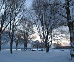 Kaivopuisto Helsinki Helsinki, Snow, Outdoor, Outdoors, Outdoor Games, The Great Outdoors, Eyes, Let It Snow