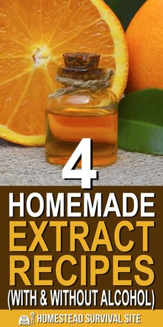 4 Homemade Extract Recipes (With & Without Alcohol) Making homemade extracts is easy as can be. Once you see how simple it is, you'll never go back to store-bought. Here are four that you can make. Vanilla Extract Without Alcohol, Vanilla Extract Recipe, Homemade Alcohol, Homemade Spices, Homemade Yogurt, Tropical Smoothie Recipes, Aromatic Herbs, Dehydrated Food, Alcohol Recipes