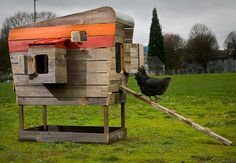 Striking Chicken Coops Built From Reclaimed Wood Come With Wheels : TreeHugger