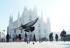 Where The Locals Eat Breakfast, Lunch And Dinner In Milan The Milanese go there, those who live in the area (or work there) and so know the neighborhood and choose the best (after they have tried everything else). In the morning, for breakfast, you find b...
