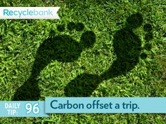 Carbon offset your next trip (or choose a travel company that does this for you).
