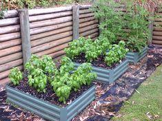Herb Garden, Herbs, Plants, Decor, Tips, Decoration, Herbs Garden, Herb, Plant