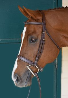 Huntley Equestrian Sedgwick Leather Fancy Stitched Square Raised Noseband
