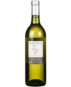 Organic Blanc Wine Sauvignon Blanc 12 Organic In 75cl From Vintage Roots Vegan Wine Sauvignon Blanc Wine
