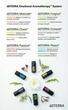 Buy 1 doterra essential oil get 1 free! The doTERRA BOGO week is here! Learn about this promotional week during November and how you can get a free oil each day. Doterra Emotional Aromatherapy, Aromatherapy Recipes, Aromatherapy Oils, Essential Oils 101, Ginger Essential Oil, Essential Oil Diffuser Blends, Ravintsara, Doterra Oils, Easential Oils