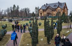 BillionaireMailingList.com -  People wander around President Viktor Yanukovych's Mezhyhirya estate, which was abandoned by security
