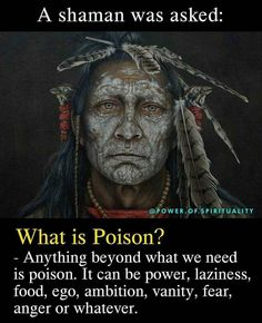 Wise Quotes, Words Quotes, Inspirational Quotes, Sayings, Qoutes, What Is Poison, Native American Wisdom, Spiritual Wisdom, Spiritual Awakening Quotes