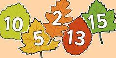 Autumn & Fall Primary Resources, season, seasons, leaves