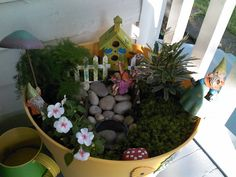 Create A Whimsical Potted Fairy Garden....