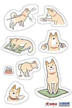 Popular dog Shiba Inu to book it Walking, bathing flee stupid Moe daily |! ETtoday pet animal News | ETtoday news cloud