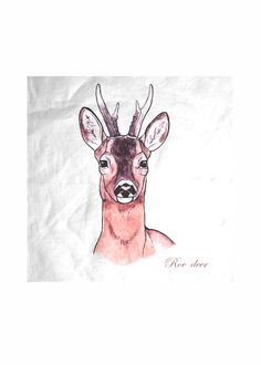SCARF - ROE DEER - DEAU  http://shopvida.com/collections/dominique-janssens  #roe #deer #christmas #fashion #pillow #interior #forest #nature #home #decoration #luxury #scarf