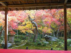 Enkouji  in Kyoto 圓光寺 京都