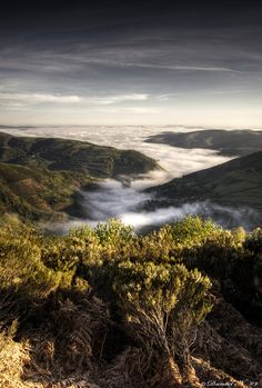 Morning fog in the O Cebreiro mountain on the Camino de Santiago in Galicia, Spain; photo by Daniel Nahabedian