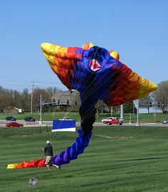 The Flights of Fancy kite festival. This kite is the size of a basketball court.