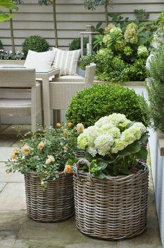 kleiner-garten-gestaltung-shabby-grosse-korbe-hortensien-rosen-buchsbaum - List of the most beautiful garden Small Gardens, Outdoor Gardens, Balcony Flowers, Basket Planters, Garden Basket, Wicker Baskets, Large Baskets, Rattan Planters, Plant Basket