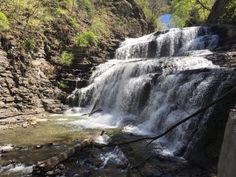 Currently, Cornell Plantations manages the trail and has done a wonderful job of…