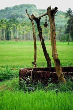 A well in a Kerala Village Village Photos, Art Village, Indian Village, Village Photography, Nature Photography, Backpacking India, New Background Images, Amazing India, India Culture