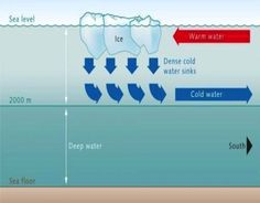 Density-Driven/Thermohaline Circulation - Water