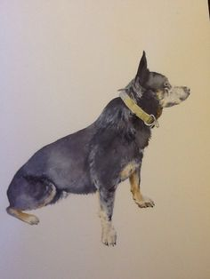 Watercolour animal