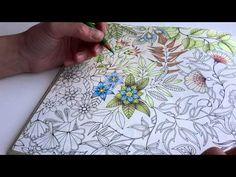 How I colour a bird (blending colours); Enchanted Forest - Johanna Basford - YouTube
