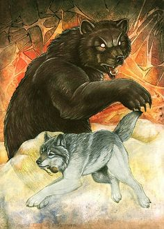 Wolf and the baer