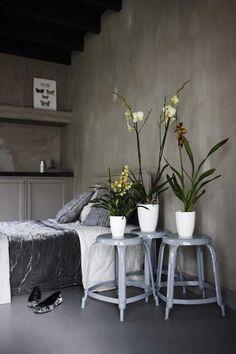 #Elho #plantenpotten  Brussels    De bestseller brussels round heeft er ook twee grotere familieleden bij gekregen, de Ø 40 en de 50 cm. Prachtige eye catchers in het interieur waar mooie grote planten waanzinnig in uitkomen. Ook voor deze grote maten is een all-in-1 watergeefsysteem beschikbaar. Zo blijven je #planten gezond zelfs als je iets langer van #huis bent, heel praktisch  Meer informatie over #woninginrichting : http://www.wonenwonen.nl/woninginrichting/elho-plantenpotten/5545