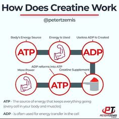 How Does Creatine Work by @petertzemis - Creatine can increase muscle strength help you work harder for longer in the gym and give you a bigger muscle pump. Its also very safe so theres no reason not to add this effective supplement to your stack. Creatine is a combination of three different amino acids: glycine arginine and methionine. That's itnothing more than a combination of amino acids. Creatine is not a steroid it is totally different and works in a different manner. Creatine is also…