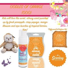 1000 Images About Kids By Scentsy On Pinterest Scentsy