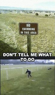 Funny Jokes, Pictures & Videos: Off Beat Humor - No Swimming! Don't tell me what.....