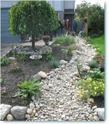 1000 Images About Dry River Bed Ideas Xeroscaping On